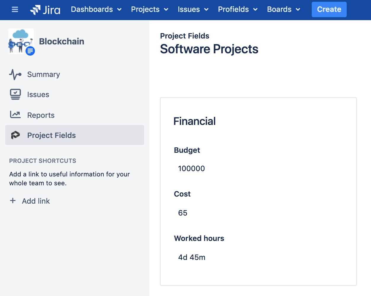 Project Layouts in Jira with Budgets, Costs, and total Worked Hours with Profields app